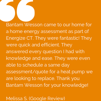 Customer Review for BantamWesson