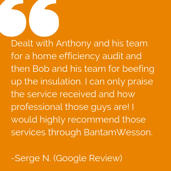 BantamWesson customer review