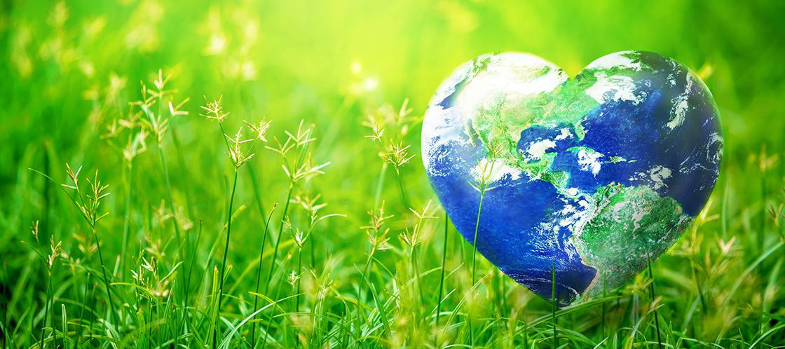 Image of a heart shaped earth laying in the green grass