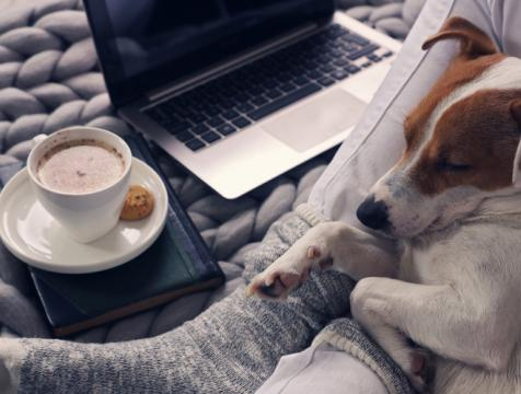 A women relaxing at home with a dog in her lap and laptop and coffee near by