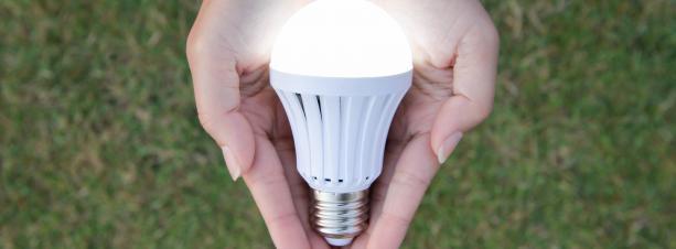 Hands holding an LED light bulb