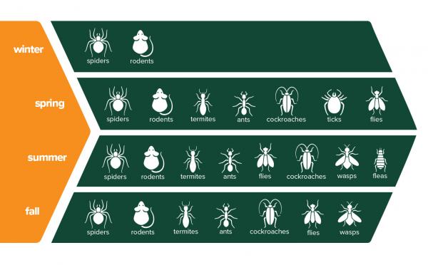 Pests by Season